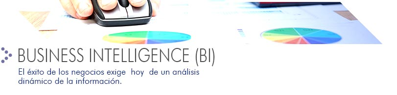 Business Intelligence BI Softland